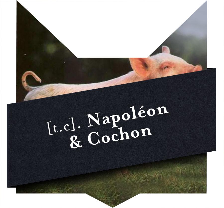 min-napoleon