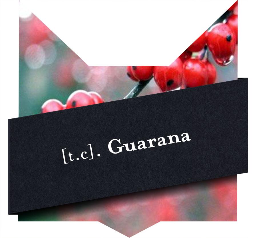 tete-chat-guarana