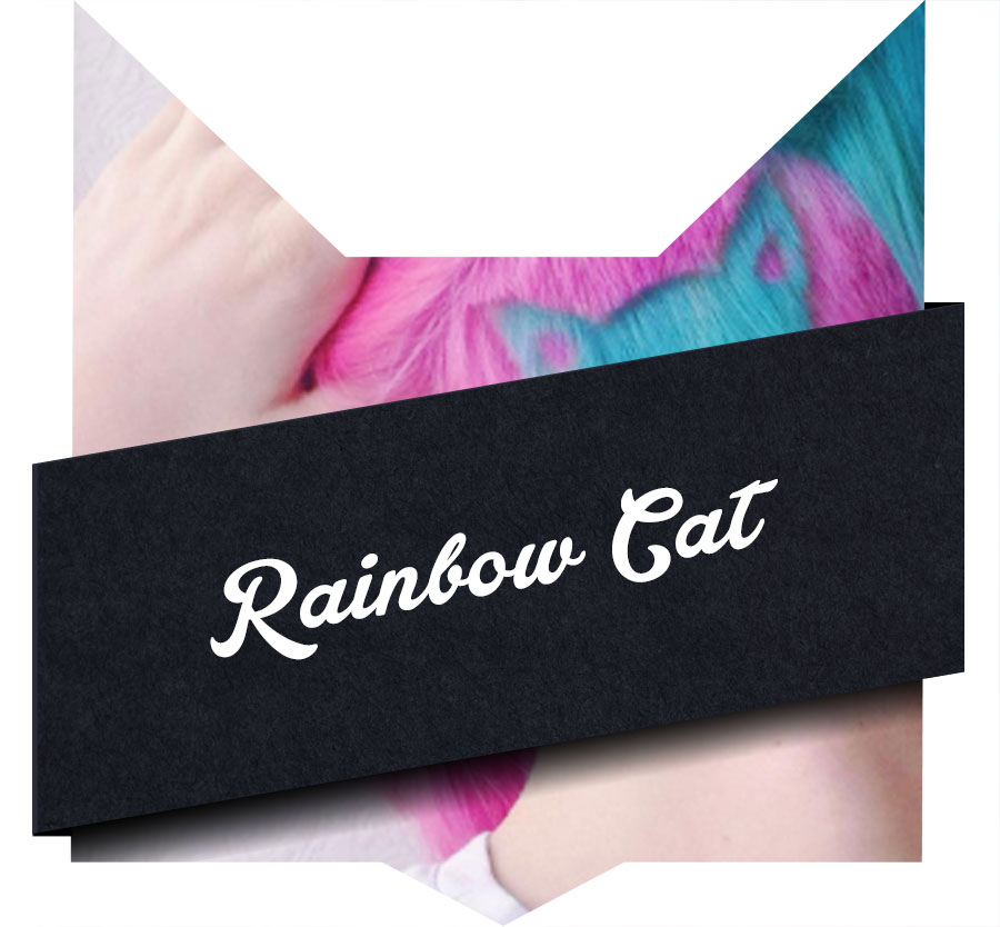 tete-chat-rainbow