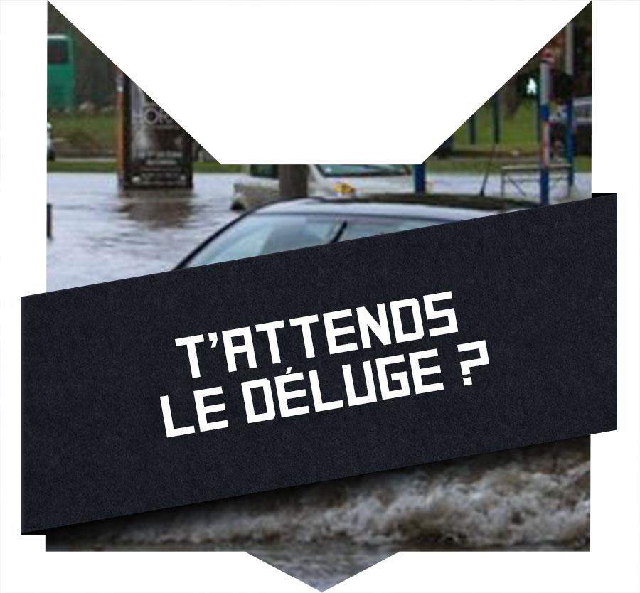 tete-chat-deluge