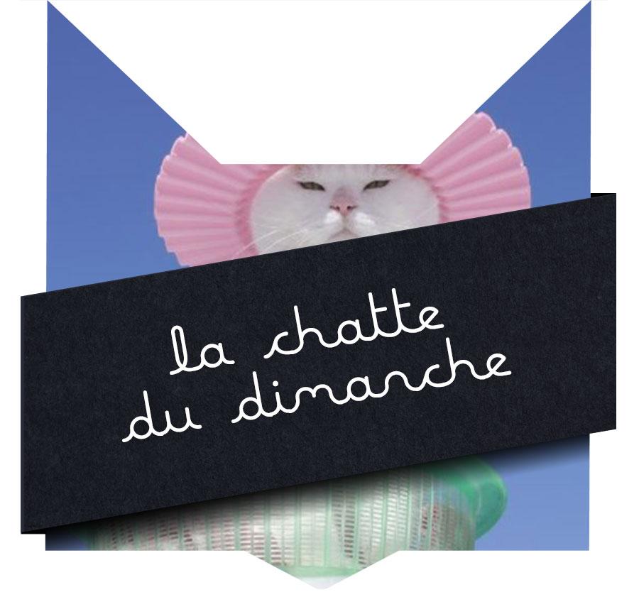 chattedimanche