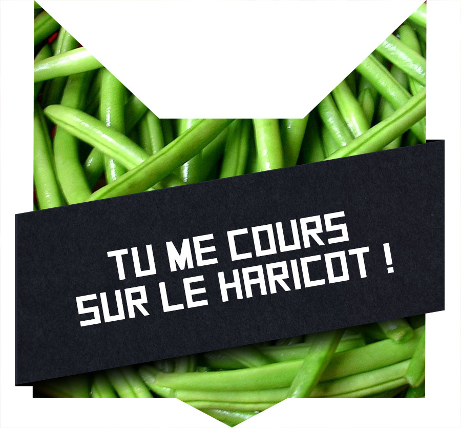 tete-chat-cours-haricot