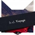 tete-chat-voyage