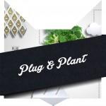 tete-chat-plug-plant