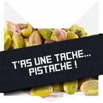 tete-chat-pistache